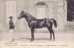 CPA - 61 - LE HARAS DU PIN - Beaumanoir étalon De Demi Sang - Narquois Quenotte Et James Watt - France