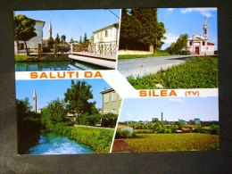 VENETO -TREVISO -SILEA -F.G. - Treviso