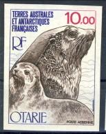 TAAF Posta Aerea 1977 N. 48 F. 10 MNH NON DENTELLATO. Catalogo € 27 - Non Dentelés, épreuves & Variétés