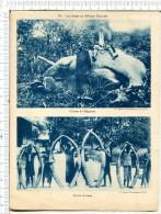 """La CHASSE En AFRIQUE CENTRALE - 2 Vues : Chasse  Eléphant - Un Lot  D  Ivoire -  Collection  """" Pour Enseignement Vivant"""" - Geographie"""