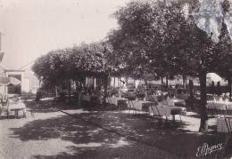 """Chartrettes """"Au Grillon Du Foyer, Chez Francis"""" Son Hôtel, Son Restaurant, Téléph: 24 - Les Terrasses - Circ Sans Date - France"""