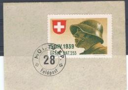 FP 468 - SUISSE FELDPOST GRENZTRUPPEN / TROUPES DE FRONTIERES - 5. DIV. 1939 Grenz. Bat. 253 Sur Fragment - Poste Militaire