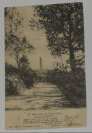 FORLì CESENA - Bertinoro - IL Cipresso Di Francesca Presso Polenta - Versetto Del Carducci - 1905 - Forlì