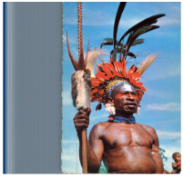 (4001) Papua New Guinea - Warrior - Papua-Neuguinea