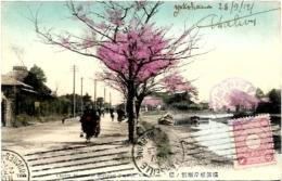 JAPON. YOKOHAMA - Yokohama