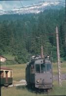 France 74, Chemin De Fer, Train à Sixt, Photo 1958 BVA, CEN 646.12 - Autres Communes