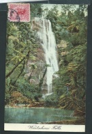 Waitakerei Falls      Obf0263 - Nueva Zelanda