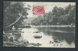 Preservation Inlet - New Zealand - West Coast Sounds   Obf0264 - Nueva Zelanda