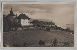 Erlach Am Bielersee - Photo: J. Gaberell No. 9917 - BE Berne