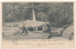 AIGLEMONT - Colonie L'Essai, Communisme Expérimental - France