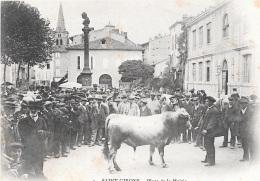 SAINT-GIRONS - Place De La Mairie (Taureau, Concours Agricole). - Saint Girons