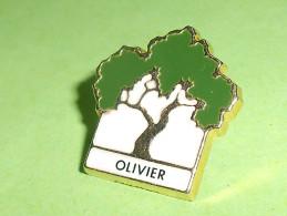 Pin's / Associations  : L'olivier , Verso Fondation Foret   TB2i - Verenigingen