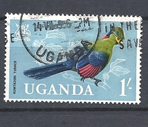 UGANDA      1965 Birds     USED  - The Ruwenzori Turaco (Ruwenzorornis Johnstoni) - Uganda (1962-...)