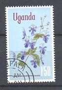 UGANDA      1969 Flowers    USED  Clerodendrum Myricoides 'Ugandense' - Uganda (1962-...)