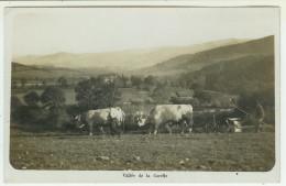 69  Vallée De La Carelle  (sur La Commune D´OUROUX :A VERIFIER )on Aperçoit Au Loin Un Château - Unclassified