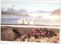 CT--N--1902--   SPEDIZIONE ITALIANA   SVALBARD  82 ---  FOTO BRUNO BARABINO - Missioni