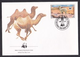 Mongolia: FDC First Day Cover, 1985, Baby Camel, Animal, WWF Panda Logo (traces Of Use) - Mongolië