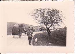 Foto Deutsche Soldaten Mit Pferdefuhrwerken - Trosskolonne - 2. WK - 6,5*4,5cm (25774) - Krieg, Militär
