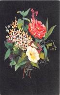 FLEURS  LAURIER ROSE, LILAS BLANC, LISERON  ILLUSTRATEUR   CARTE DESSINEE - Fleurs