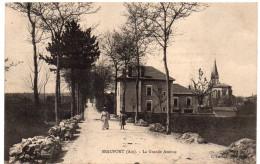 BEAUPONT ( Ain ) - La Grande Avenue - Ed. Ferrand, Bourg - Très Bon état - France