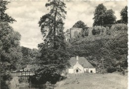 Beaumont  Trinité Notre Dame - Beaumont