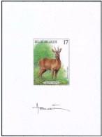 Année 1998 : NA5-FR - Mammifères Des Ardennes - Projets Non Adoptés