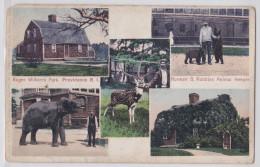 PROVIDENCE (RI) - Roger Williams Park Norman B. Robbins Animal Keeper - Bear Dresser - Dresseur D'Ours - Eléphant - Zoo - Providence