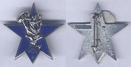 Insigne De La Compagnie De Commandement Et De Logistique Du 7e Bataillon De Chasseurs Alpins - Army
