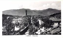 # Saluti Da Caprio - Panorama - (CP 14 Cm X 8,5cm) - Massa