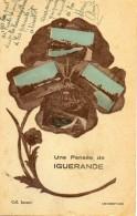 - Une Pensée D'IGUERANDE (multivues)  -7424- - France