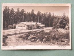 ALLEMAGNE - SCHIERKE BAHNHOF (gare) - Schierke