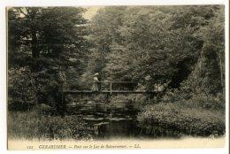 GERARDMER - Pont Sur Le Lac De Retournemer - Gerardmer