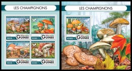 GUINEA 2016 - Mushrooms. M/S + S/S. Official Issue - Paddestoelen