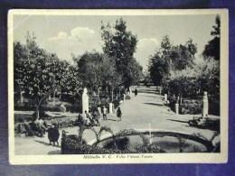 SICILIA- CATANIA -MILITELLO -F.G. LOTTO N°567 - Catania