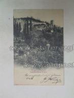 Lago Di Garda 3005 Arco Vegetationsstudie Ed A Lutteri Nr 1500 - Italia