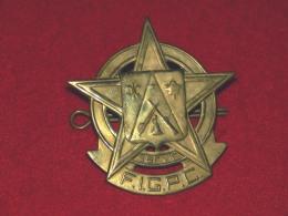 """Badge, FIGPC """" Federation International Des Gardes Paroissial Du Canada"""" 6 X 5.5 Cm 18 Gr, Laiton Embossé - 2 Scans - Militaria"""