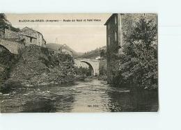 SAINT JEAN DU BRUEL : Route De Nant Et Pont Vieux. 2 Scans. Edition Fabre - Altri Comuni
