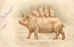 FAMILLE COCHON - Carte Illustrée. - Cochons
