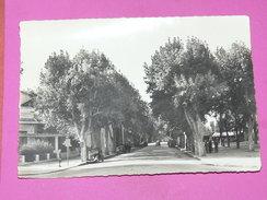 AIX EN PROVENCE  / 1960 /   BVD REPUBLIQUE  /  FORMAT 10X15 CM - Aix En Provence