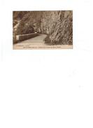 Carte Postale Novalaise (Savoie) Gorges Du Mont Lépine - Francia
