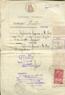 CERTIFICATO PENALES  PROCURA DELLA REPUBLICA PRESSO IL TRIBUNALE DI AÑO 1949 TREVISO ITALIA ZTU. - Historical Documents