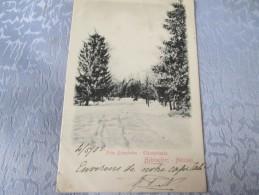 FINLANDE  .  HELSINGFORS.  NEIGE  DOS 1900 - Finland