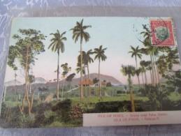 CUBA.   ISLE OF PINES . SCENE NEAR PALM GROVE . . CACHET CONSULAT DE FRANCE - Postcards