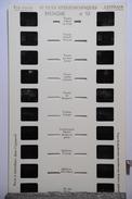 LESTRADE :  BRETAGNE N°13    VANNES - Stereoscopi