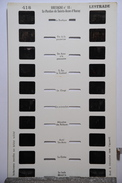 LESTRADE :  BRETAGNE N°18 LE PARDON DE SAINTE-ANNE D'AURAY - Stereoscopi