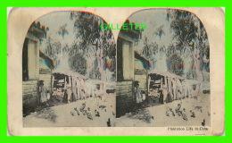 CARTES STÉRÉOCOSPIQUES - PLANTATION LIFE IN CUBA - ANIMATED - - Cartes Stéréoscopiques