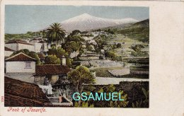 Espagne – Islas Canarias - PEAK OF TENERIFE. - (voir Scan). - Espagne