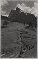 Grimmialp Bei Schwenden Im Diemtigtal Rothorn - Photo: E. Gyger No. 16852 - BE Berne