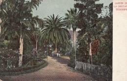 Espagne - Islas Canarias - Jardin De La Orotava - Tenerife - Tenerife