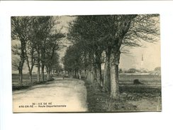 Cp - Ile De Ré (17) - ARS EN RE - Route Départementale - Ile De Ré